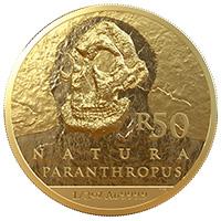 R50 1/2oz Gold: Paranthropus Robustus