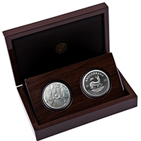 Big 5 Rhino and Krugerrand Proof Set – Silver