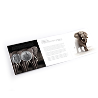 2021-Elephant-Brilliant-Uncirculated-Package-02