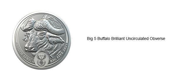 Big-5-Buffalo-BU-Slider-Obv