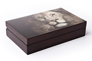 Big-5-Lion-Box-Closed