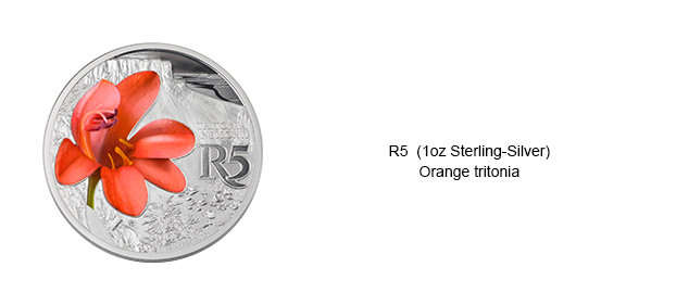 Colour-Coins-R5-Orange-Tritonia