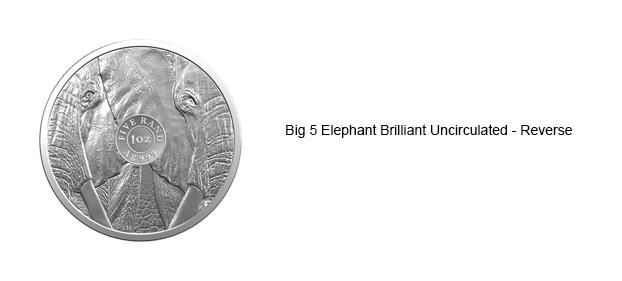 Elephant-Reverse