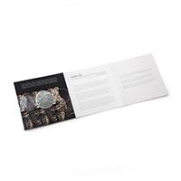 Leopard–Blister-Pack-open
