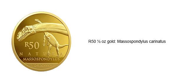 R50-halfoz-Gold-Massospondylus-Carinatus