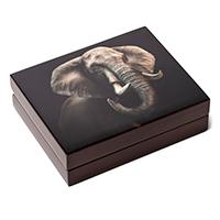 SA-Mint-Big-5-Elephant-Collection-II-Double-Capsule-Box-Closed-Reverse