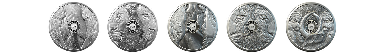 SA-Mint-Big-5-Full-Proof-Set-Coin-Banner-Reverse
