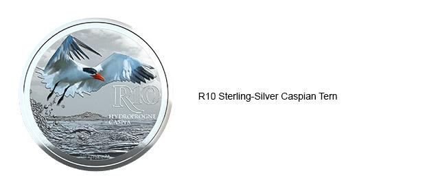 Sterling Silver Caspian Tern
